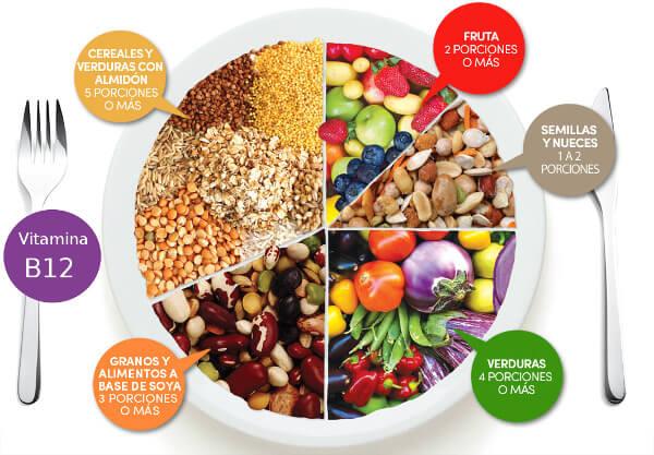 Proporciones en un plato vegano- guia vegana para principiantes