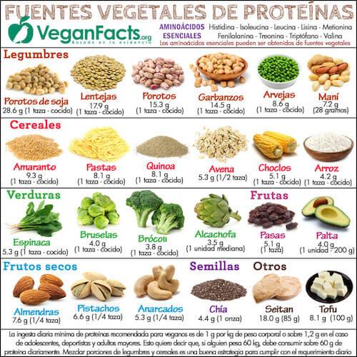 Fuentes veganas de Zinc- Guia Vegana Para principiantes- The Vegan Hopper